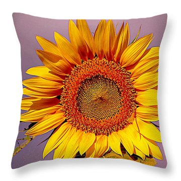 Sunflower Time Throw Pillow