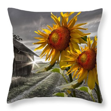 Throw Pillow featuring the photograph Sunflower Watch by Debra and Dave Vanderlaan