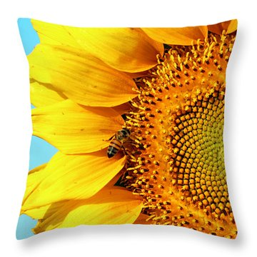 Sunflower With Bee - Photo Throw Pillow