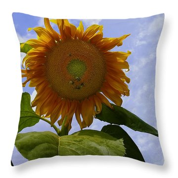 Sunflower With Busy Bees Throw Pillow by Chris Flees