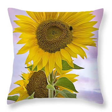 Sunflower With Colorful Evening Sky Throw Pillow