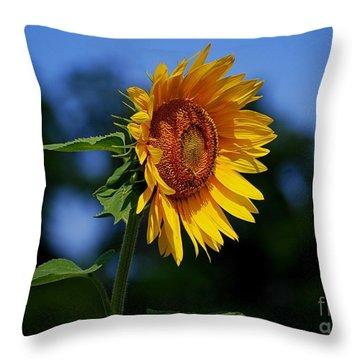 Sunflower With Honeybee Throw Pillow