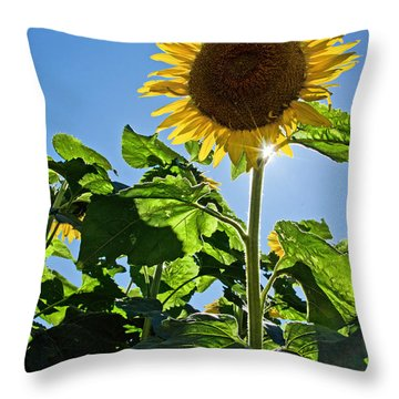 Sunflower With Sun Throw Pillow