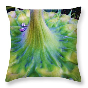 Throw Pillow featuring the photograph Sunflower...moonside 1 by Daniel Thompson