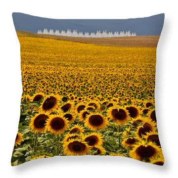 Throw Pillow featuring the photograph Sunflowers And Airports by Ronda Kimbrow