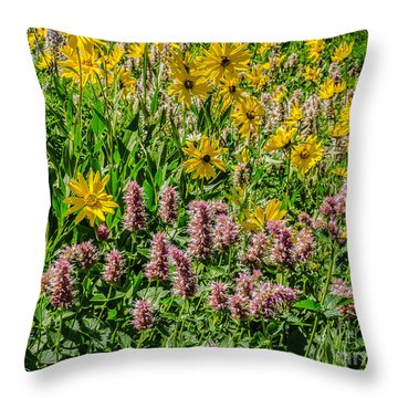 Sunflowers And Horsemint Throw Pillow
