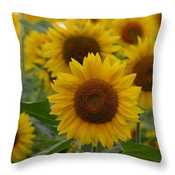Sunflowers At The Farm Throw Pillow