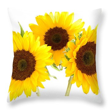 Sunflowers Throw Pillow by Claudio Bacinello
