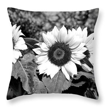 Sunflowers In Black And White Throw Pillow by Kaye Menner