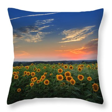Sunflowers In The Evening Throw Pillow