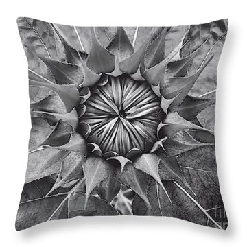 Sunflower's Shades Of Grey Throw Pillow by Elizabeth Dow