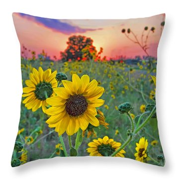 Sunflowers Sunset Throw Pillow by Gary Holmes