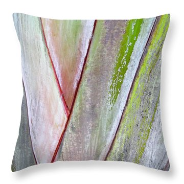 Sunken Gardens Abstract 4 Throw Pillow by Maria Huntley