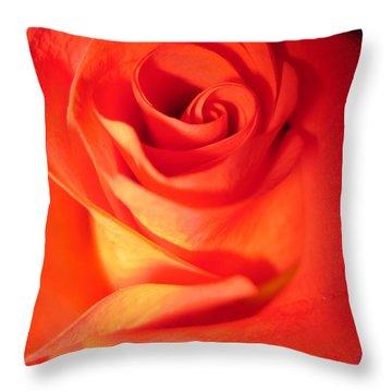 Sunkissed Orange Rose 10 Throw Pillow
