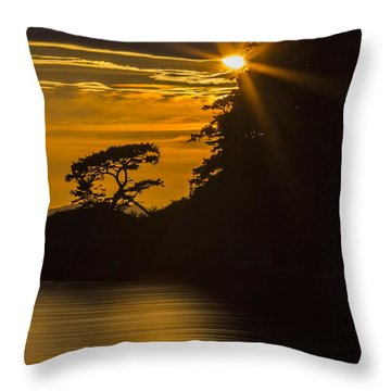 Sunkissed Throw Pillow by Sonya Lang