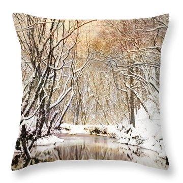 Sunkissed Winter Creek Throw Pillow by Jai Johnson