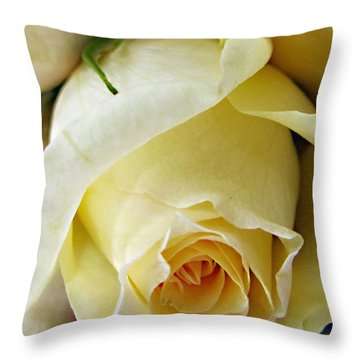 Sunkissed Yellow Rose Throw Pillow