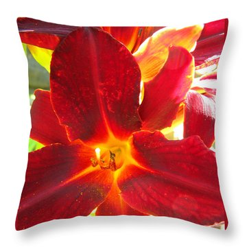 Throw Pillow featuring the photograph Sunlight And Daylilies A Match Made In Heaven by Brooks Garten Hauschild