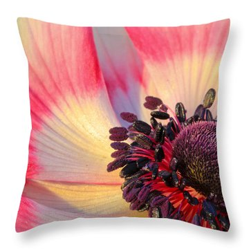 Sunlight Just Right Throw Pillow
