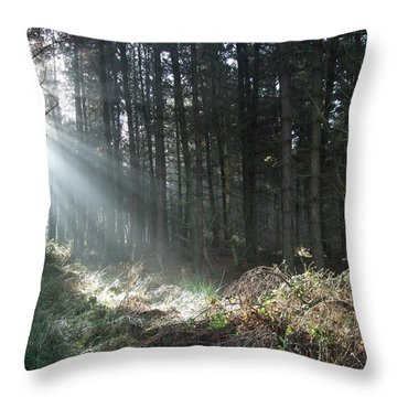 Throw Pillow featuring the photograph Sunlight On Cannock Chase by Jean Walker