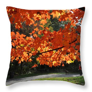 Sunlight On Red Maple Leaves Throw Pillow by Diane Lent