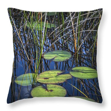 Sunlight On The Lilypads Throw Pillow by Debra and Dave Vanderlaan
