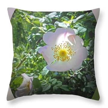 Sunlight On The Wild Pink Rose Throw Pillow by Patricia Keller