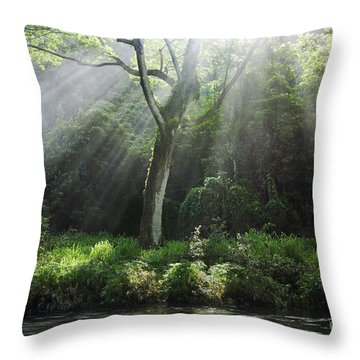 Sunlight Rays Through Trees Throw Pillow by M Swiet Productions