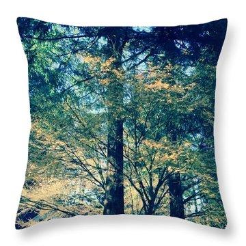 Sunlight Through Vine Maples Throw Pillow