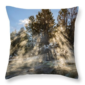 Sunlight Through The Trees 2 Throw Pillow by Sue Smith