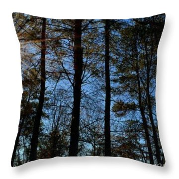 Throw Pillow featuring the photograph Sunlight Through Trees by Tara Potts