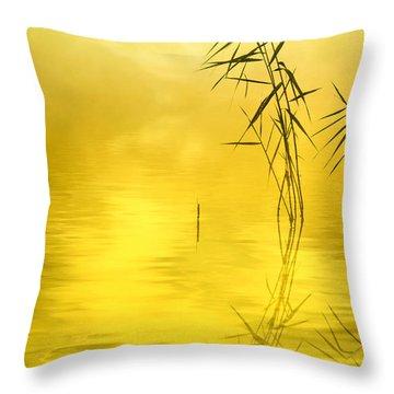 Sunlight Throw Pillow by Veikko Suikkanen