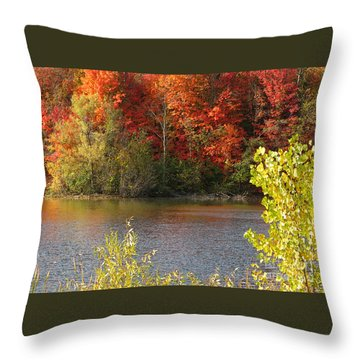 Sunlit Autumn Throw Pillow by Ann Horn