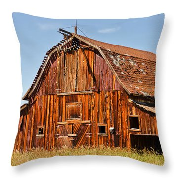 Sunlit Barn Throw Pillow by Sue Smith