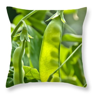 Sunlit Bounty Throw Pillow by Cheryl Baxter