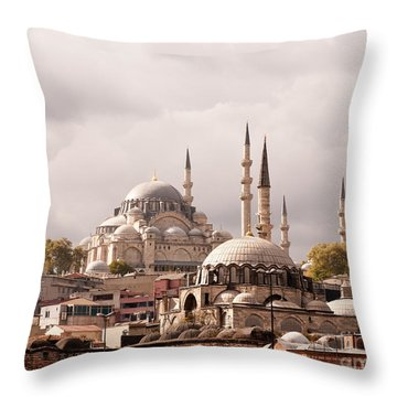 Sunlit Domes Throw Pillow