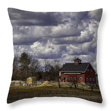 Throw Pillow featuring the photograph Sunlit Farm by Betty Denise