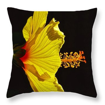 Sunlit Hibiscus Throw Pillow