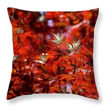 Sunlit Japanese Maple Throw Pillow