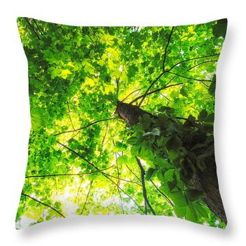 Sunlit Leaves Throw Pillow