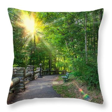 Sunlit Path Throw Pillow by Mary Almond