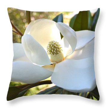 Sunlit Southern Magnolia Throw Pillow