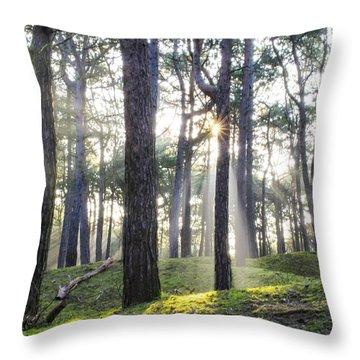 Sunlit Trees Throw Pillow