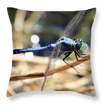 Sunning Blue Dragonfly Square Throw Pillow by Carol Groenen