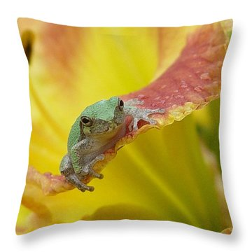 Sunning In A Day Lily Throw Pillow