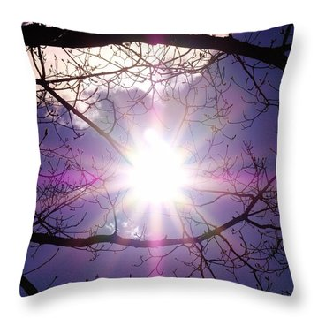 Throw Pillow featuring the photograph Sunny Afternoon by Sherman Perry