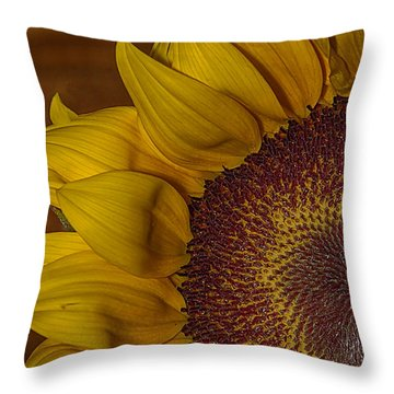 Sunny Throw Pillow by Anne Rodkin