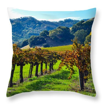 Sunny Autumn Vineyards Throw Pillow by CML Brown