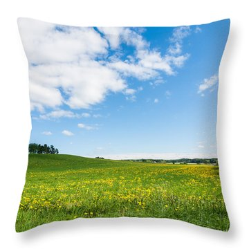 Sunny Day At The Fields Of Gold Throw Pillow