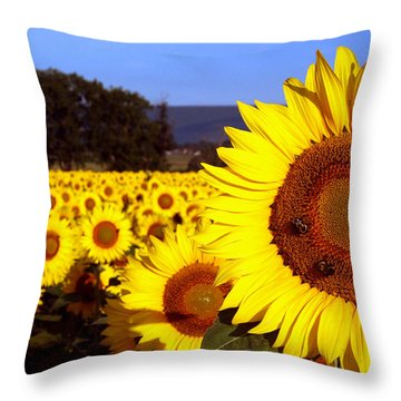 Sunny Day II Throw Pillow